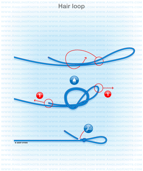 Loop Knot Driverlayer Search Engine