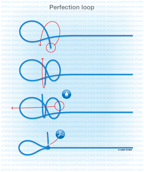 Perfection loop for Fly fishing knots